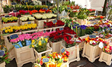 Le métier du fleuriste en 5 points